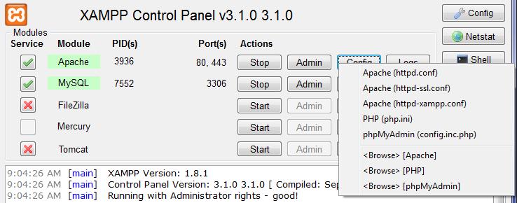 Configuring XAMPP: Advanced Settings Screen