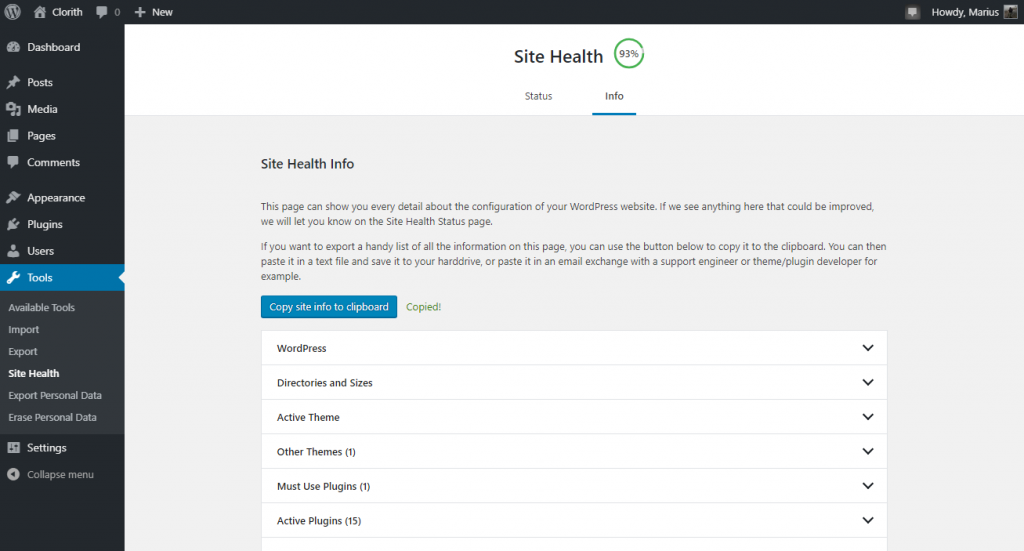 Screenshot of the WordPress Site Health Information page