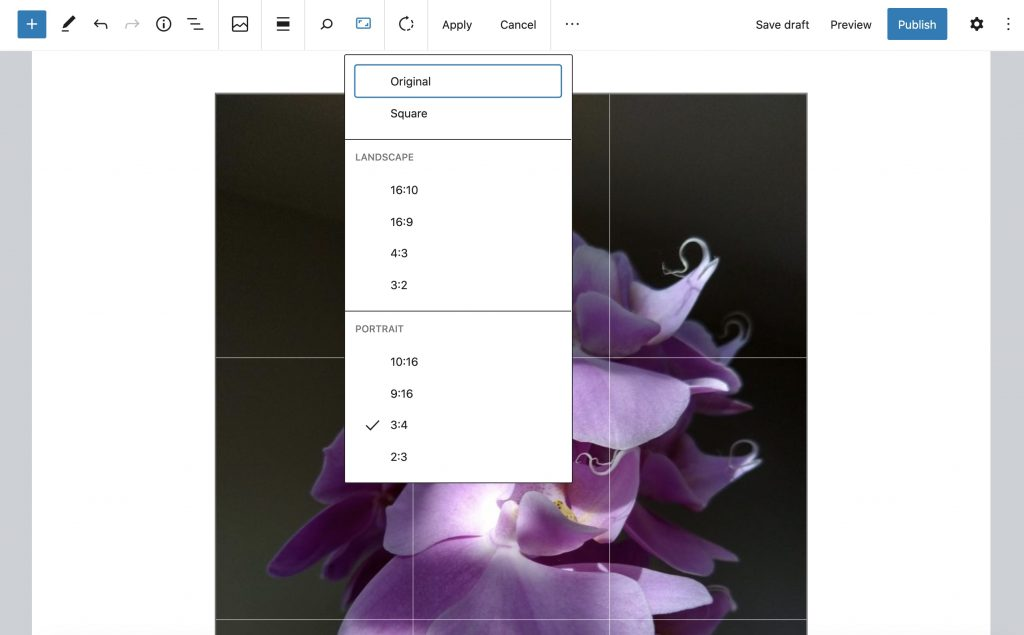 Editing an image in the image block, aspect ration drop-down open.