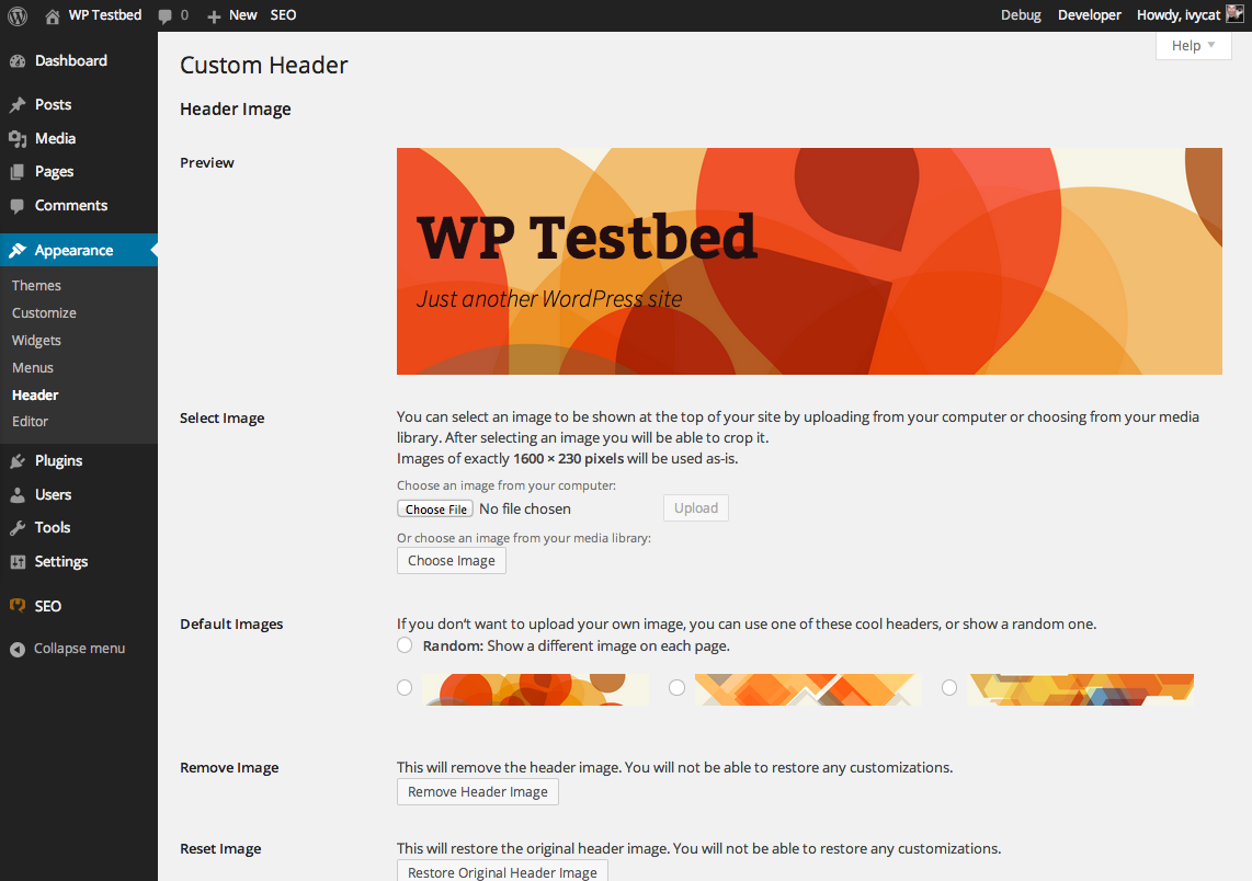customize thesis theme header According to harsh of wwwshoutmeloudcom, thesis is the best seo wordpress theme but a more intuitive wordpress theme is arthemia premium from colorlabs and you can.