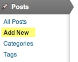 the posts menu on the WordPress admin screens with Add New highlighted