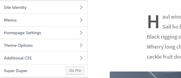 Screenshot of the customize section button in the WordPress theme customizer.